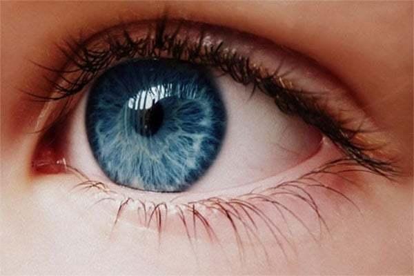 Đôi mắt là cửa sổ tâm hồn nên cần hết sức giữ gìn. Các bệnh về mắt đang ngày càng phổ biến trong cuộc sống hiện đại. Thời buổi công nghệ, mắt thường xuyên phải tiếp xúc nhiều với phương tiện điện tử, do ô nhiễm môi trường, khói bụi khiến các bệnh về mắt ngày càng gia tăng. Đặc biệt là các vấn đề liên quan đến các bộ phận dễ bị tổn thương như điểm vàng, thủy tinh thể...