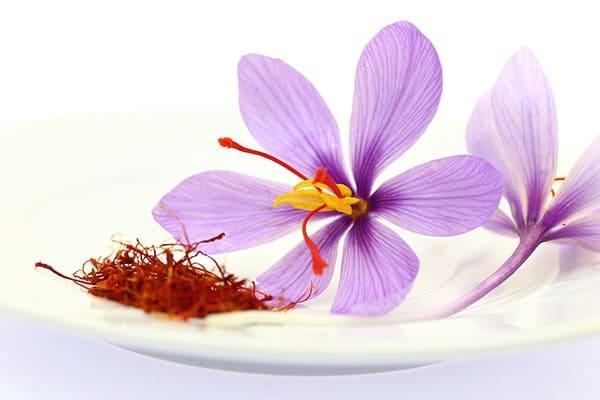 Dùng nhụy hoa nghệ tây sẽ giúp tăng cường sức khỏe